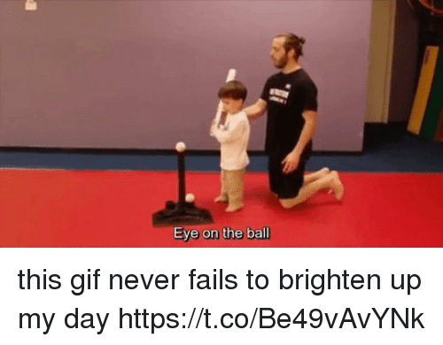 Gif, Girl Memes, and Never: Eye on the ball this gif never fails to brighten up my day https://t.co/Be49vAvYNk