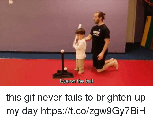 Gif, Girl Memes, and Never: Eye on the ball this gif never fails to brighten up my day https://t.co/zgw9Gy7BiH