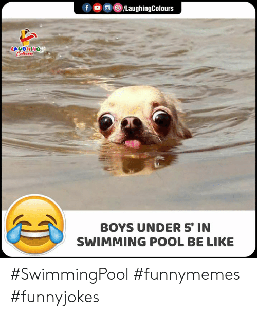 Indianpeoplefacebook: f /LaughingColours  LAUGHING  Celeurs  BOYS UNDER 5' IN  SWIMMING POOL BE LIKE #SwimmingPool #funnymemes #funnyjokes