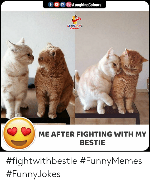 Indianpeoplefacebook: f /LaughingColours  LAUGHING  Celeurs  ME AFTER FIGHTING WITH MY  BESTIE #fightwithbestie #FunnyMemes #FunnyJokes