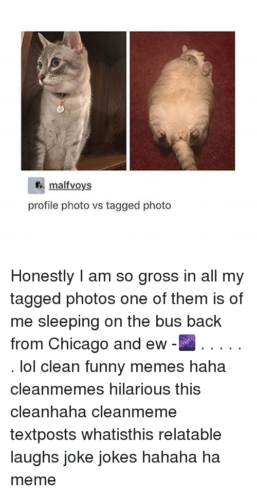 Chicago, Funny, and Lol: f malfvoys  profile photo vs tagged photo Honestly I am so gross in all my tagged photos one of them is of me sleeping on the bus back from Chicago and ew -🌌 . . . . . . lol clean funny memes haha cleanmemes hilarious this cleanhaha cleanmeme textposts whatisthis relatable laughs joke jokes hahaha ha meme