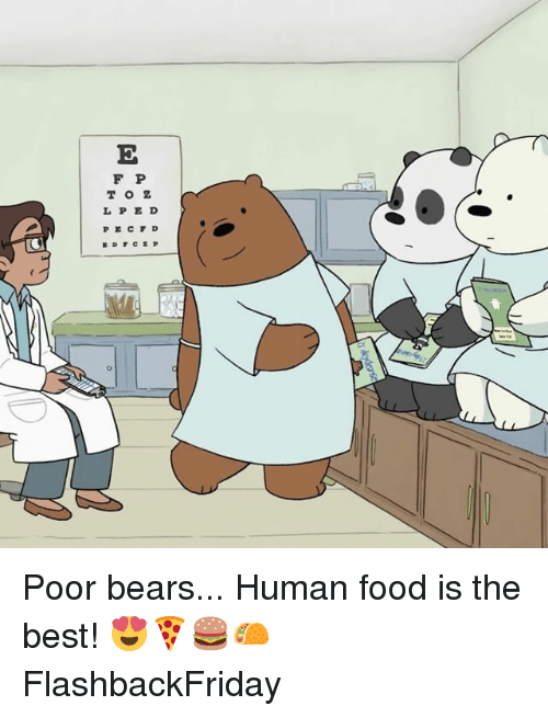 Food, Memes, and Bears: F P  TOZ  L PE D Poor bears... Human food is the best! 😍🍕🍔🌮 FlashbackFriday