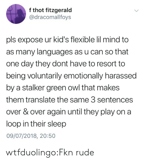 Stalker: f thot fitzgerald  @dracomallfoys  pls expose ur kid's flexible lil mind to  as many languages as u can so that  one day they dont have to resort to  being voluntarily emotionally harassed  by a stalker green owl that makes  them translate the same 3 sentences  over & over again until they play on a  loop in their sleep  09/07/2018, 20:50 wtfduolingo:Fkn rude