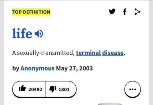 Sexually: f  TOP DEFINITION  life  A sexually-transmitted, terminal disease.  by Anonymous May 27, 2003  20492  1801