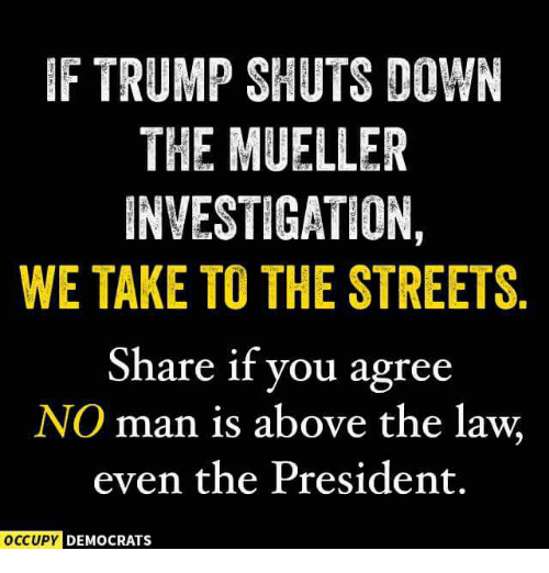 Streets, Trump, and Above the Law: F TRUMP SHUTS DOWN  THE MUELLER  INVESTIGATION  WE TAKE TO THE STREETS.  Share if you agree  NO man is above the law  even the President.  DEMOCRATS