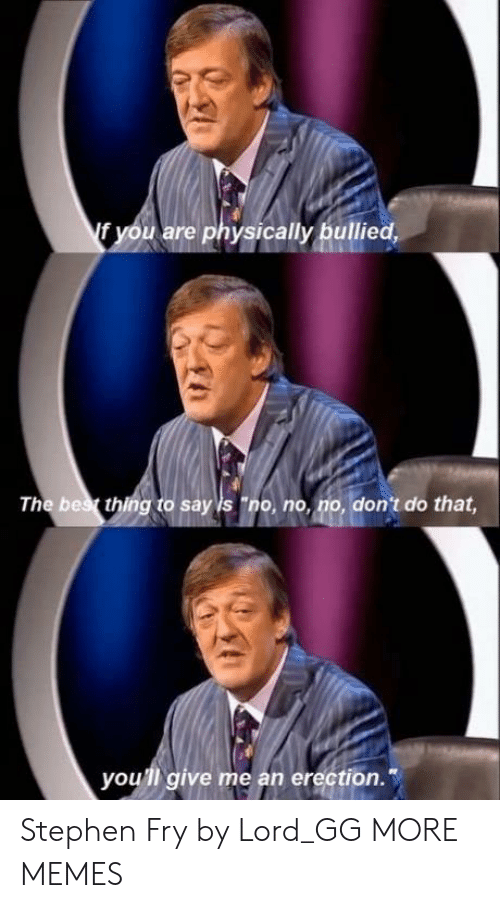 """bes: f you are physically bullied,  The bes thing to say is """"no, no, no, don't do that  you'll give me an erection. Stephen Fry by Lord_GG MORE MEMES"""