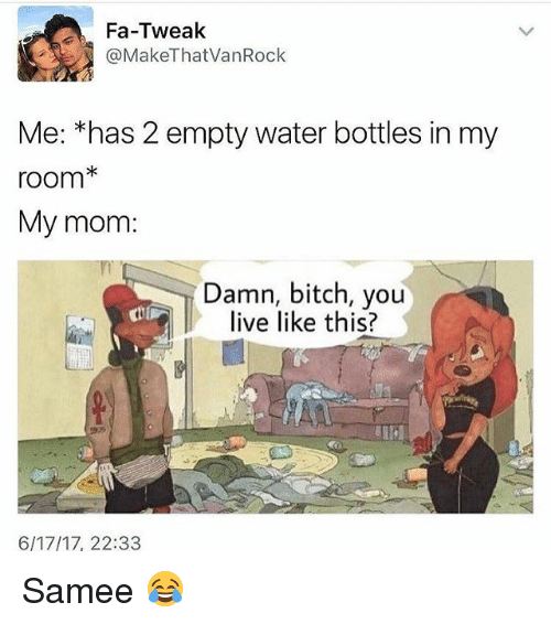 Bitch, Memes, and Live: Fa-Tweak  @Make That VanRock  Me: *has 2 empty water bottles in my  room*  My mom  Damn, bitch, you  ll live like this?  6/17/17, 22:33 Samee 😂
