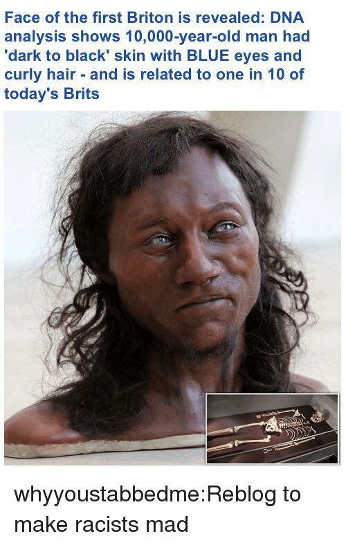 curly hair: Face of the first Briton is revealed: DNA  analysis shows 10,000-year-old man had  'dark to black' skin with BLUE eyes and  curly hair and is related to one in 10 of  today's Brits whyyoustabbedme:Reblog to make racists mad