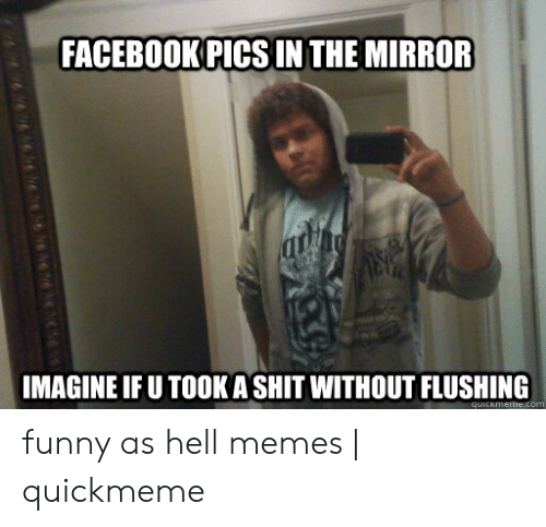 What The Hell Meme: FACEBOOK PIGS IN THE MIRROR  MAGINE IF U TOOK A SHIT WITHOUT FLUSHING funny as hell memes | quickmeme