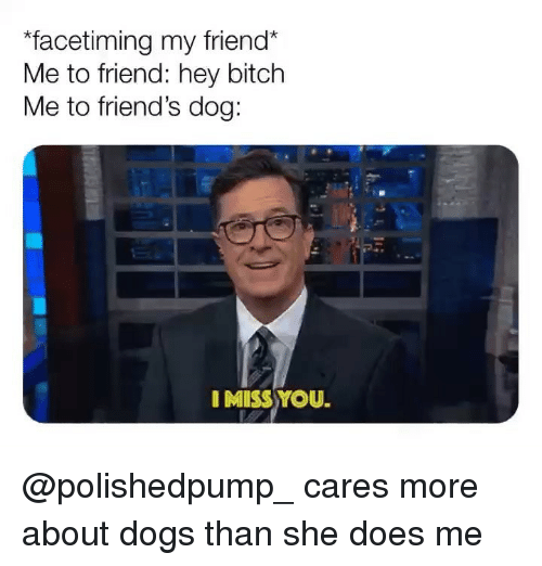 Bitch, Dogs, and Friends: facetiming my friend  Me to friend: hey bitch  Me to friend's dog:  I MISS YOU. @polishedpump_ cares more about dogs than she does me