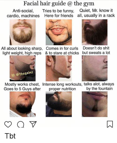 reps: Facial hair guide @ the gym  Anti-social, Tries to be funny, Quiet, Mr. know it  cardio, machines Here for friends all, usually in a rack  All about looking sharp, Comes in for curls Doesn't do shit  light weight, high reps & to stare at chicks but sweats a lot  IG: @thegainz  Mostly works chest, Intense long workouts, talks alot, always  Goes to 5 Guys after proper nutrition by the fountain Tbt