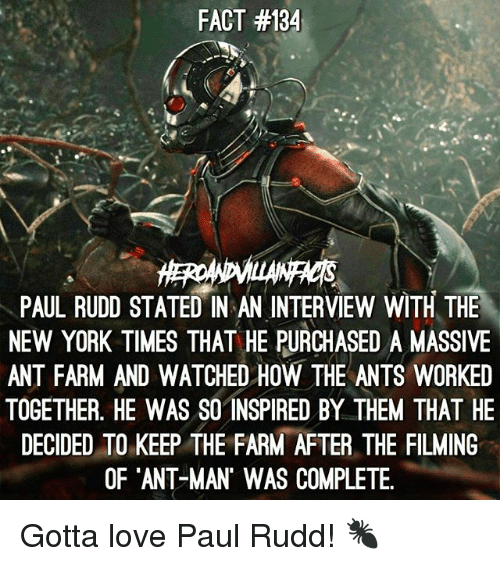 Love, Memes, and New York: FACT #134  PAUL RUDD STATED IN AN INTERVIEW WITH THE  NEW YORK TIMES THAT HE PURCHASED A MASSIVE  ANT FARM AND WATCHED HOW THE ANTS WORKED  TOGETHER. HE WAS SO INSPIRED BY THEM THAT HE  DECIDED TO KEEP THE FARM AFTER THE FILMING  OF ANT MAN' WAS COMPLETE. Gotta love Paul Rudd! 🐜