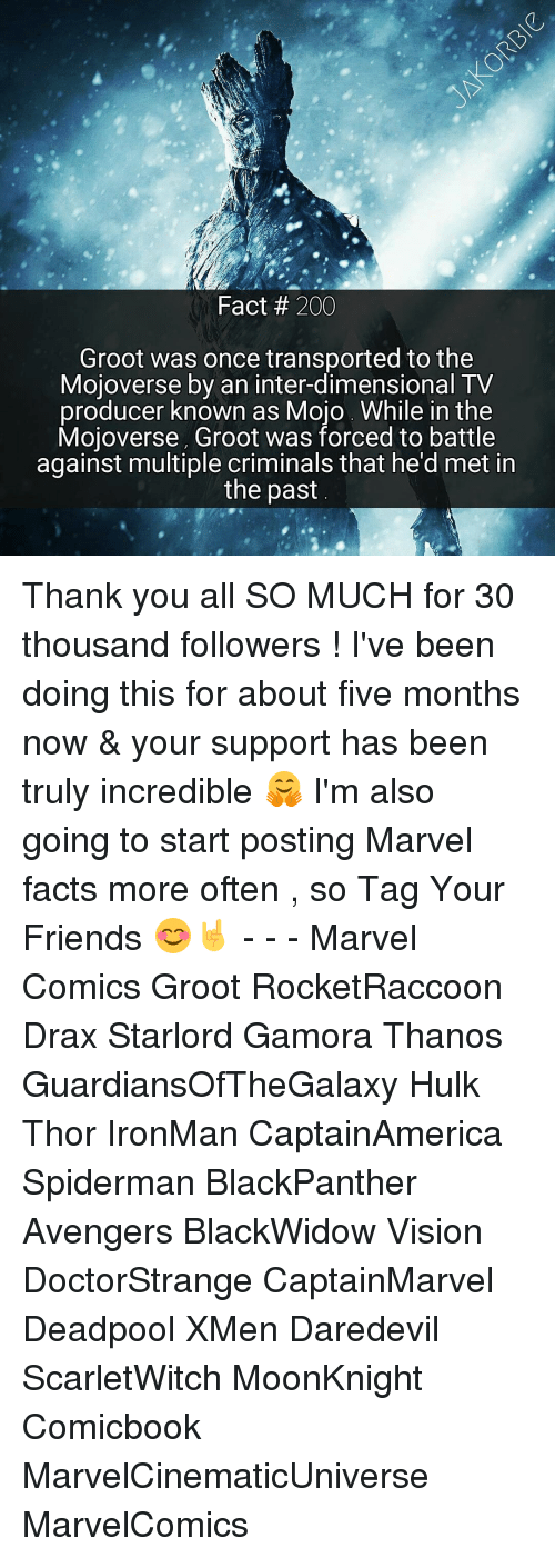 Criminations: Fact 200  Groot was once transported to the  Mojoverse by an inter-dimensional TV  producer known as Mojo While in the  Mojoverse, Groot was forced to battle  against multiple criminals that he'd met in  the past Thank you all SO MUCH for 30 thousand followers ! I've been doing this for about five months now & your support has been truly incredible 🤗 I'm also going to start posting Marvel facts more often , so Tag Your Friends 😊🤘 - - - Marvel Comics Groot RocketRaccoon Drax Starlord Gamora Thanos GuardiansOfTheGalaxy Hulk Thor IronMan CaptainAmerica Spiderman BlackPanther Avengers BlackWidow Vision DoctorStrange CaptainMarvel Deadpool XMen Daredevil ScarletWitch MoonKnight Comicbook MarvelCinematicUniverse MarvelComics