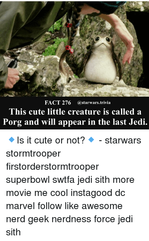 Cute, Jedi, and Memes: FACT 276 @starwars.trivia  This cute little creature is called a  Porg and will appear in the last Jedi. 🔹Is it cute or not?🔹 - starwars stormtrooper firstorderstormtrooper superbowl swtfa jedi sith more movie me cool instagood dc marvel follow like awesome nerd geek nerdness force jedi sith