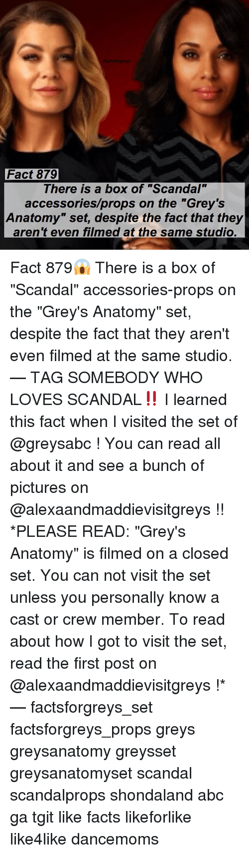 🔥 25+ Best Memes About the Greys | the Greys Memes