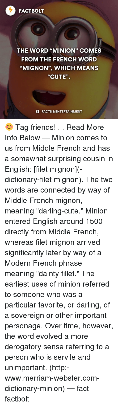 funny merriam webster memes of 2017 on sizzle unpresidented memes connected and dictionary fact bolt the word minion comes from
