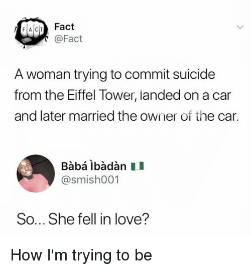 Love, Memes, and Baba: FACT Fact  @Fact  A woman trying to commit suicide  from the Eiffel Tower, landed on a car  and later married the owner of the car.  Babá ibàdàn II  @smish001  So... She fell in love? How I'm trying to be