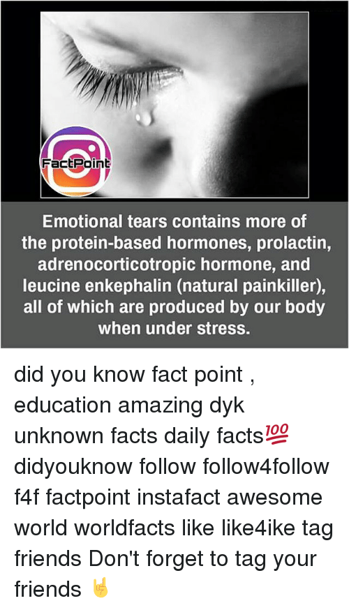 hormonal: Fact Point  Emotional tears contains more of  the protein-based hormones, prolactin,  adrenocorticotropic hormone, and  leucine enkephalin (natural painkiller),  all of which are produced by our body  when under stress. did you know fact point , education amazing dyk unknown facts daily facts💯 didyouknow follow follow4follow f4f factpoint instafact awesome world worldfacts like like4ike tag friends Don't forget to tag your friends 🤘