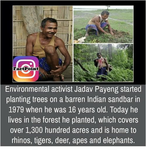 barren: Fact Point  Environmental activist Jadav Payeng started  planting trees on a barren Indian sandbar in  1979 when he was 16 years old. Today he  lives in the forest he planted, which covers  over 1,300 hundred acres and is home to  rhinos, tigers, deer, apes and elephants.