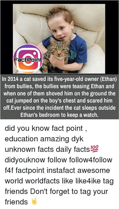 Memes, Jumped, and 🤖: Fact Point  In 2014 a cat saved its five-year-old owner (Ethan)  from bullies, the bullies were teasing Ethan and  when one of them shoved him on the ground the  cat jumped on the boy's chest and scared him  off.Ever since the incident the cat sleeps outside  Ethan's bedroom to keep a watch. did you know fact point , education amazing dyk unknown facts daily facts💯 didyouknow follow follow4follow f4f factpoint instafact awesome world worldfacts like like4ike tag friends Don't forget to tag your friends 🤘