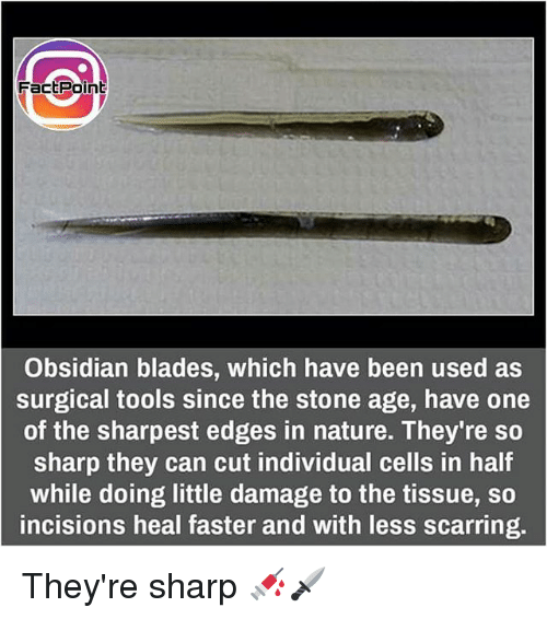 Memes, Nature, and Been: Fact Point  Obsidian blades, which have been used as  surgical tools since the stone age, have one  of the sharpest edges in nature. They're so  sharp they can cut individual cells in half  while doing little damage to the tissue, so  incisions heal faster and with less scarring. They're sharp 💉🗡