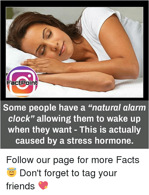"""hormonal: Fact Point  Some people have a """"natural alarm  Clock"""" allowing them to wake up  when they want This is actually  caused by a stress hormone. Follow our page for more Facts 😇 Don't forget to tag your friends 💖"""