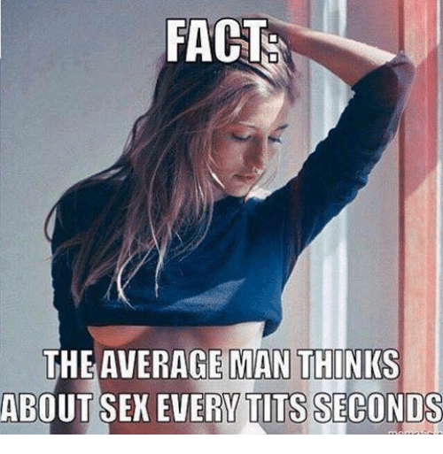 memes: FACT  THE AVERAGE MAN  THINKS  ABOUT SEX EVERY TITS SECONDS