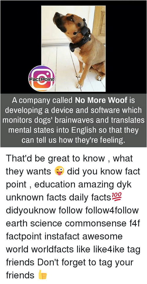 Thatd Be Great: FactPoint  A company called No More Woof is  developing a device and software which  monitors dogs' brainwaves and translates  mental states into English so that they  can tell us how they're feeling. That'd be great to know , what they wants 😜 did you know fact point , education amazing dyk unknown facts daily facts💯 didyouknow follow follow4follow earth science commonsense f4f factpoint instafact awesome world worldfacts like like4ike tag friends Don't forget to tag your friends 👍