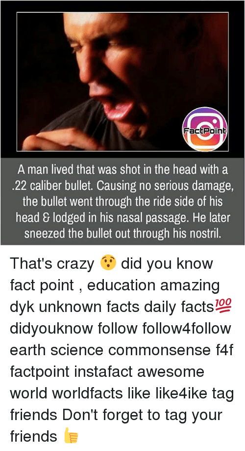 Crazy, Facts, and Friends: FactPoint  A man lived that was shot in the head with a  22 caliber bullet. Causing no serious damage  the bullet went through the ride side of his  head & lodged in his nasal passage. He later  sneezed the bullet out through his nostril. That's crazy 😯 did you know fact point , education amazing dyk unknown facts daily facts💯 didyouknow follow follow4follow earth science commonsense f4f factpoint instafact awesome world worldfacts like like4ike tag friends Don't forget to tag your friends 👍