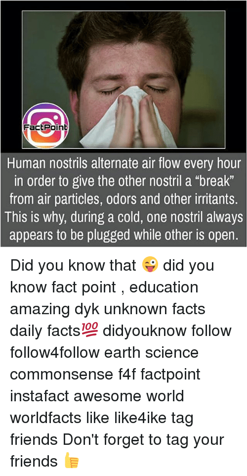 "Facts, Friends, and Memes: FactPoint  Human nostrils alternate air flow every hour  in order to give the other nostril a ""break""  from air particles, odors and other irritants.  is why, during a cold, one nostril always  appears to be plugged while other is open.  This Did you know that 😜 did you know fact point , education amazing dyk unknown facts daily facts💯 didyouknow follow follow4follow earth science commonsense f4f factpoint instafact awesome world worldfacts like like4ike tag friends Don't forget to tag your friends 👍"
