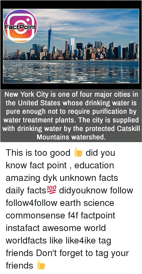 Drinking, Facts, and Friends: FactPoint  New York City is one of four major cities in  the United States whose drinking water is  pure enough not to require purification by  water treatment plants. The city is supplied  with drinking water by the protected Catskill  Mountains watershed. This is too good 👍 did you know fact point , education amazing dyk unknown facts daily facts💯 didyouknow follow follow4follow earth science commonsense f4f factpoint instafact awesome world worldfacts like like4ike tag friends Don't forget to tag your friends 👍