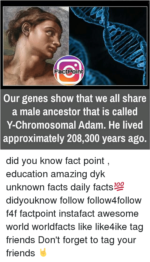 Memes, 300, and 🤖: FactPoint  Our genes show that we all share  a male ancestor that IS called  Y-Chromosomal Adam. He lived  approximately 208,300 years ago. did you know fact point , education amazing dyk unknown facts daily facts💯 didyouknow follow follow4follow f4f factpoint instafact awesome world worldfacts like like4ike tag friends Don't forget to tag your friends 🤘