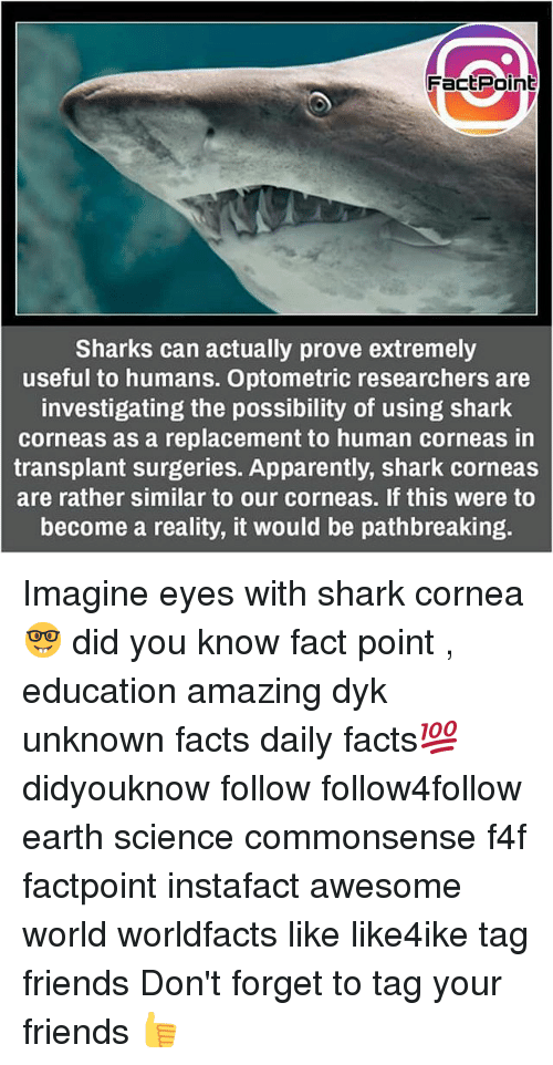Apparently, Facts, and Friends: FactPoint  Sharks can actually prove extremely  useful to humans. Optometric researchers are  investigating the possibility of using shark  corneas as a replacement to human corneas in  transplant surgeries. Apparently, shark corneas  are rather similar to our corneas. If this were to  become a reality, it would be pathbreaking Imagine eyes with shark cornea 🤓 did you know fact point , education amazing dyk unknown facts daily facts💯 didyouknow follow follow4follow earth science commonsense f4f factpoint instafact awesome world worldfacts like like4ike tag friends Don't forget to tag your friends 👍