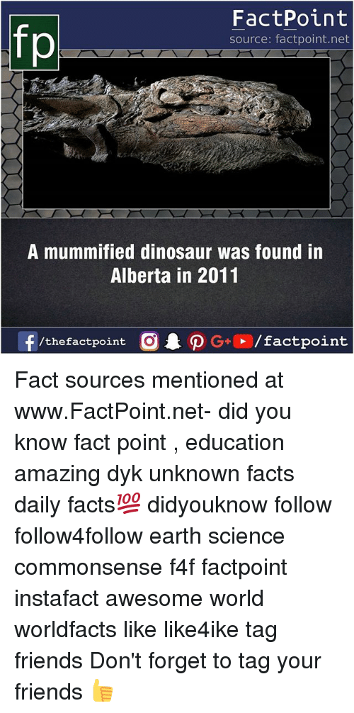 Dinosaur, Facts, and Friends: FactPoint  source: factpoint.net  A mummified dinosaur was found in  Alberta in 2011  f/thefactpoint  G+/factpoint Fact sources mentioned at www.FactPoint.net- did you know fact point , education amazing dyk unknown facts daily facts💯 didyouknow follow follow4follow earth science commonsense f4f factpoint instafact awesome world worldfacts like like4ike tag friends Don't forget to tag your friends 👍