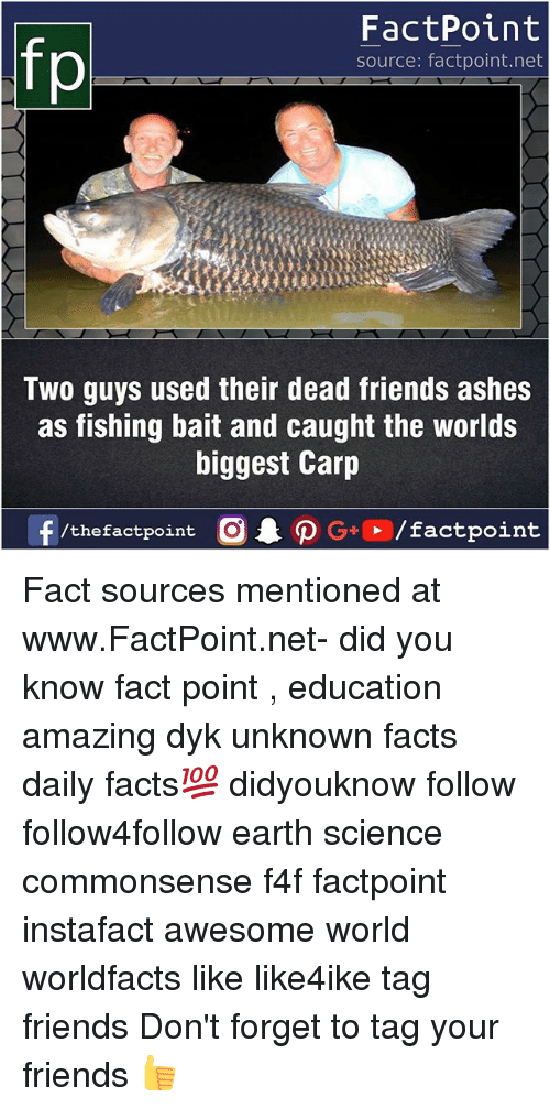 Facts, Friends, and Memes: FactPoint  source: factpoint.net  Two guys used their dead friends ashes  as fishing bait and caught the worlds  biggest Carp  f/thefactpoint  G+/factpoint Fact sources mentioned at www.FactPoint.net- did you know fact point , education amazing dyk unknown facts daily facts💯 didyouknow follow follow4follow earth science commonsense f4f factpoint instafact awesome world worldfacts like like4ike tag friends Don't forget to tag your friends 👍