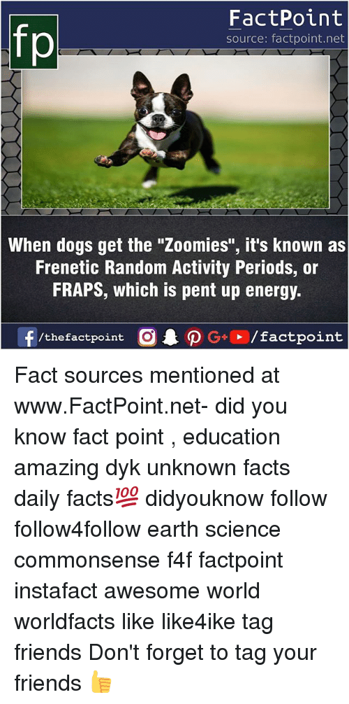 """Dogs, Energy, and Facts: FactPoint  source: factpoint.net  When dogs get the """"Zoomies"""", it's known as  Frenetic Random Activity Periods, or  FRAPS, which is pent up energy.  f/thefactpoint  G+/factpoint Fact sources mentioned at www.FactPoint.net- did you know fact point , education amazing dyk unknown facts daily facts💯 didyouknow follow follow4follow earth science commonsense f4f factpoint instafact awesome world worldfacts like like4ike tag friends Don't forget to tag your friends 👍"""