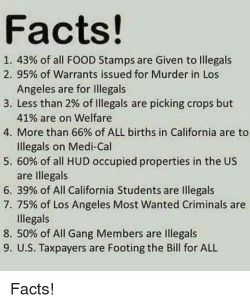 Of Food Stamps Given To Illegals