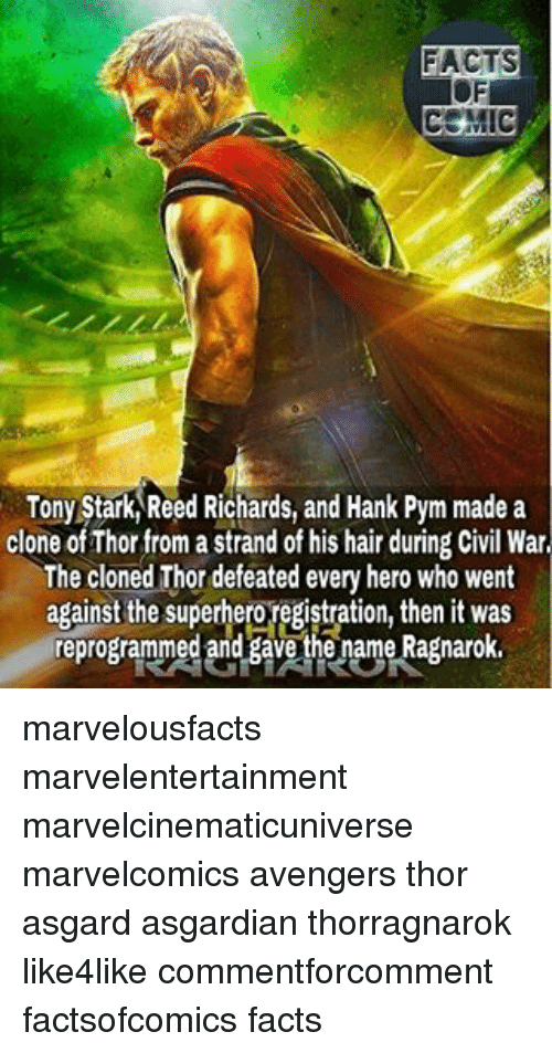 tony stark: FACTS  COMIC  Tony Stark Reed Richards, and Hank Pym made a  clone ofThor from a strand of his hair during Civil War  The cloned Thor defeated every hero who went  against the superhero registration, then it was  reprogrammed and gave the name Ragnarok. marvelousfacts marvelentertainment marvelcinematicuniverse marvelcomics avengers thor asgard asgardian thorragnarok like4like commentforcomment factsofcomics facts
