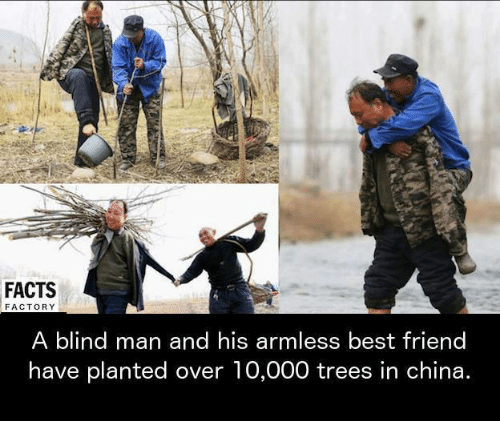 factorial: FACTS  FACTORY  A blind man and his armless best friend  have planted over 10,000 trees in china.