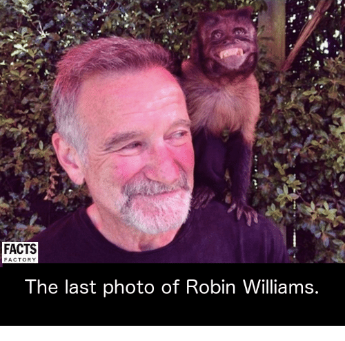 factorial: FACTS  FACTORY  The last photo of Robin Williams.