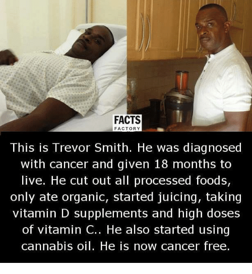 Memes, Vitamin D, and 🤖: FACTS  FACTORY  This is Trevor Smith. He was diagnosed  with cancer and given 18 months to  live. He cut out all processed foods,  only ate organic, started juicing, taking  vitamin D supplements and high doses  of vitamin C.. He also started using  cannabis oil. He is now cancer free.