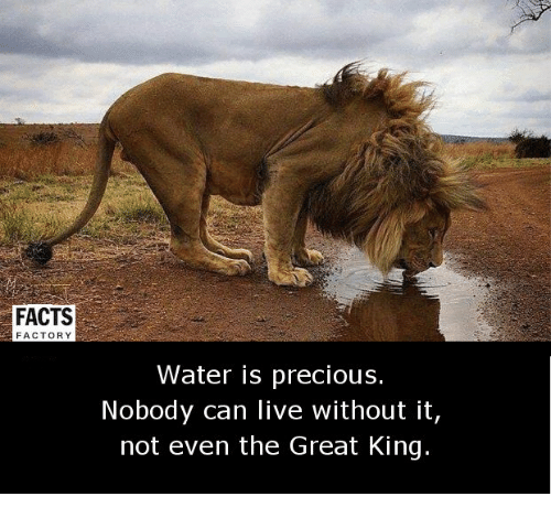 factorial: FACTS  FACTORY  Water is precious.  Nobody can live without it,  not even the Great King.