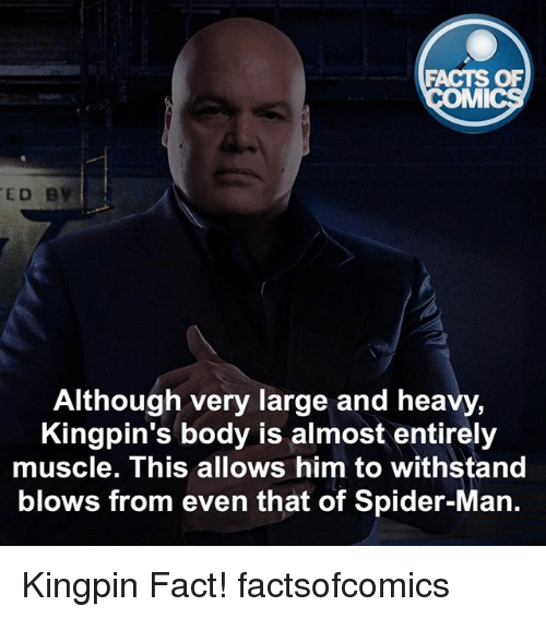 Withstanded: FACTS OF  MMI  ED B  Although very large and heavy,  Kingpin's body is almost entirely  muscle. This allows him to withstand  blows from even that of Spider-Man. Kingpin Fact! factsofcomics