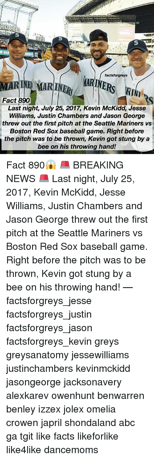 mariners: factsforgreys  MARINE MARINR ARINE  Fact 890  Last night, July 25, 2017, Kevin McKidd, Jesse  Williams, Justin Chambers and Jason George  threw out the first pitch at the Seattle Mariners vs  Boston Red Sox baseball game. Right before  the pitch was to be thrown, Kevin got stung by a  bee on his throwing hand! Fact 890😱 🚨 BREAKING NEWS 🚨 Last night, July 25, 2017, Kevin McKidd, Jesse Williams, Justin Chambers and Jason George threw out the first pitch at the Seattle Mariners vs Boston Red Sox baseball game. Right before the pitch was to be thrown, Kevin got stung by a bee on his throwing hand! — factsforgreys_jesse factsforgreys_justin factsforgreys_jason factsforgreys_kevin greys greysanatomy jessewilliams justinchambers kevinmckidd jasongeorge jacksonavery alexkarev owenhunt benwarren benley izzex jolex omelia crowen japril shondaland abc ga tgit like facts likeforlike like4like dancemoms