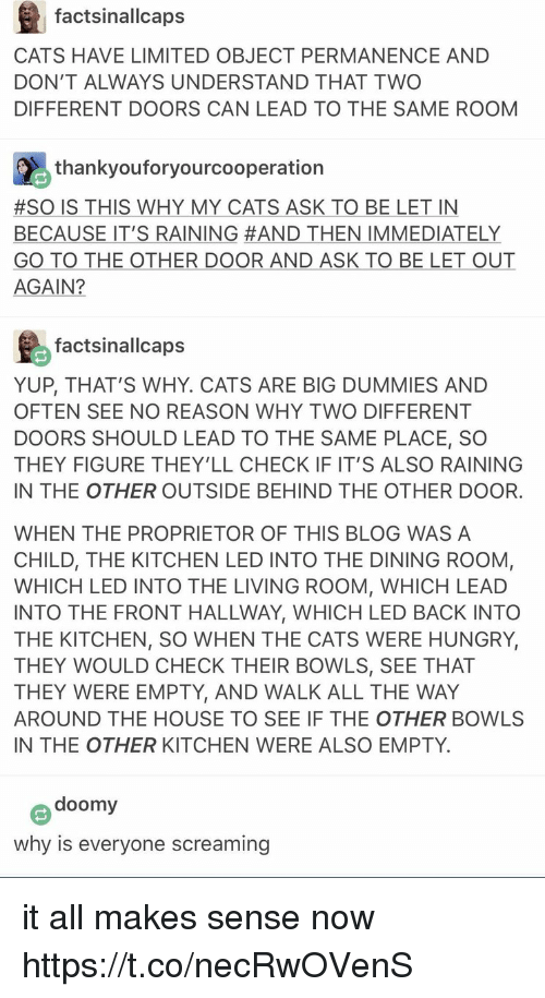 Cats, Hungry, and Memes: factsinallcaps  CATS HAVE LIMITED OBJECT PERMANENCE AND  DON'T ALWAYS UNDERSTAND THAT TWO  DIFFERENT DOORS CAN LEAD TO THE SAME ROOM  thankyouforyourcooperation  #SO IS THIS WHY MY CATS ASK TO BE LET IN  BECAUSE IT'S RAINING #AND THEN IMMEDIATELY  GO TO THE OTHER DOOR AND ASK TO BE LET OUT  AGAIN?  factsinallcaps  YUP, THAT'S WHY. CATS ARE BIG DUMMIES AND  OFTEN SEE NO REASON WHY TWO DIFFERENT  DOORS SHOULD LEAD TO THE SAME PLACE, SO  THEY FIGURE THEY'LL CHECK IF IT'S ALSO RAINING  IN THE OTHER OUTSIDE BEHIND THE OTHER DOOR  WHEN THE PROPRIETOR OF THIS BLOG WAS A  CHILD, THE KITCHEN LED INTO THE DINING ROOM,  WHICH LED INTO THE LIVING ROOM, WHICH LEAD  INTO THE FRONT HALLWAY, WHICH LED BACK INTO  THE KITCHEN, SO WHEN THE CATS WERE HUNGRY,  THEY WOULD CHECK THEIR BOWLS, SEE THAT  THEY WERE EMPTY, AND WALK ALL THE WAY  AROUND THE HOUSE TO SEE IF THE OTHER BOWLS  IN THE OTHER KITCHEN WERE ALSO EMPTY  doomy  why is everyone screaming it all makes sense now https://t.co/necRwOVenS
