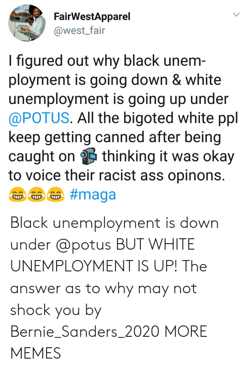 Bernie Sanders: FairWestApparel  @west_fair  I figured out why black unem  ployment is going down & white  unemployment is going up under  @POTUS. All the bigoted white ppl  keep getting canned after being  caught on thinking it was okay  to voice their racist ass opinons Black unemployment is down under @potus BUT WHITE UNEMPLOYMENT IS UP! The answer as to why may not shock you by Bernie_Sanders_2020 MORE MEMES