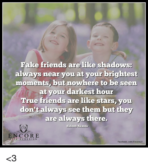 Fake Friends Are Like Shadows Always Near You At Your