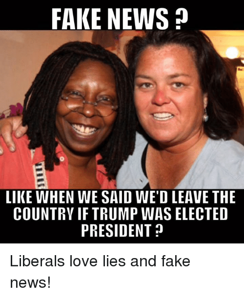 Memes, 🤖, and Fakings: FAKE NEWS  LIKE WHEN WE SAID WED LEAVE THE  COUNTRY IF TRUMP WAS ELECTED  PRESIDENT Liberals love lies and fake news!