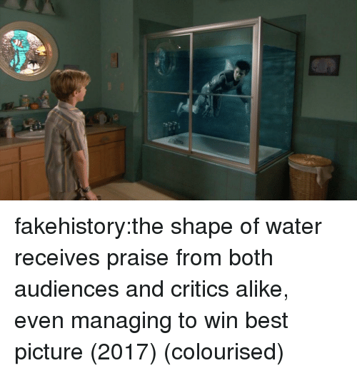alike: fakehistory:the shape of water receives praise from both audiences and critics alike, even managing to win best picture (2017) (colourised)