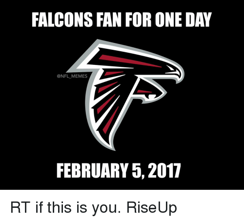 Falcons Fans: FALCONS FAN FOR ONE DAY  @NFL MEMES  FEBRUARY 5, 2017 RT if this is you. RiseUp